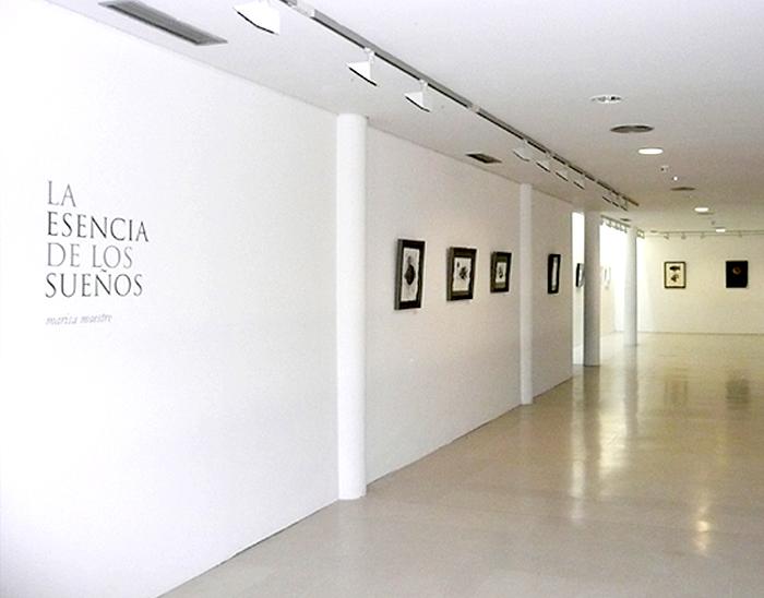 """Exposición """"La esencia de los sueños"""""""