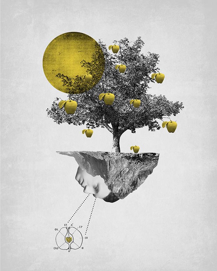 Ilustración Mas que cuentos