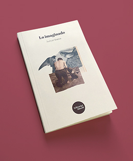Portada libro «Lo imaginado»  Collage